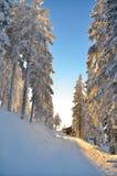 在滑雪倾斜的日落 免版税库存照片
