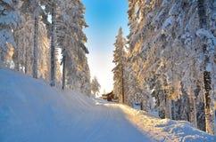 在滑雪倾斜的日落 库存图片
