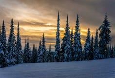 在滑雪小山的日落在太阳锐化 图库摄影