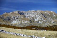 在滑雪胜地Zabljak附近的山 黑山 免版税库存图片