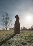 在结霜的草的墓碑与树和太阳 库存照片