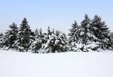 在暴风雪以后的冬天横向 免版税库存照片