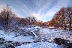 在冻,冰冷的河的背景的偏僻的下落的树日落的 图库摄影