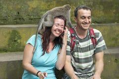 在头,巴厘岛的猴子 免版税库存图片