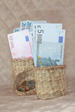 在篮子的欧元。 库存图片