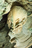 在洞, Ratchaprapa,泰国的惊人的石笋 图库摄影
