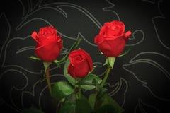在黑backround的三朵红色新鲜的玫瑰 免版税库存照片