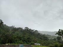 在` El Baboso `公共的雨 库存图片