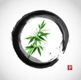 在黑enso圈子的绿色竹子 免版税图库摄影