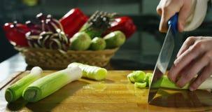 在4k或6k决议的成份和行动射击由食物意大利产业专家机构和专家厨师 股票录像