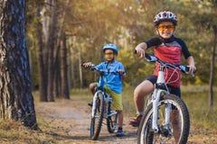 在abicycles的孩子在循环户外在盔甲的晴朗的森林孩子 库存照片