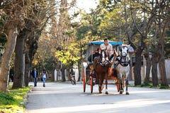 在Adalar的敞蓬旅游车,伊斯坦布尔 免版税图库摄影