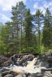 在Ahvenkoski瀑布的8月 卡累利阿 库存图片