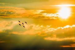 在airshow的飞机 图库摄影