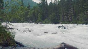 在Akkem河,阿尔泰共和国,俄罗斯的日出 4K 股票录像