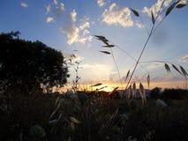 在Alhaurin de la Torre马拉加西班牙的秋天日落 图库摄影