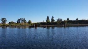 在Allouette河的打桩 图库摄影
