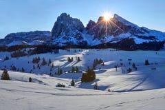 在Alpe di Siusi的冬天日出有在Sassolungo和Sassopiatto,白云岩,意大利的看法 免版税图库摄影