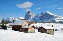 在Alpe di Siusi的瑞士山中的牧人小屋 免版税库存图片