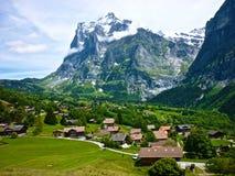 在Alpes山的夏天,瑞士 绿草和多雪的山峰对比  库存图片
