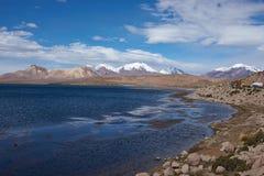 在Altiplano的交通堵塞 库存照片