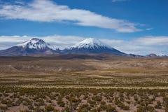 在Altiplano的火山 免版税库存图片