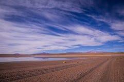 在altiplano,玻利维亚的反射 库存图片