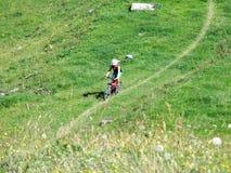 在Alviergruppe山脉的倾斜的美丽如画的高山登山车足迹 图库摄影