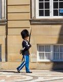 在Amalienborg城堡的皇家卫兵在哥本哈根 免版税库存图片