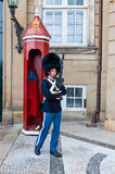 在Amalienborg宫殿,哥本哈根,丹麦的卫兵 库存图片