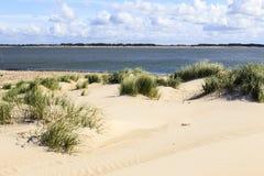 在Amrum,德国的海滩 免版税图库摄影