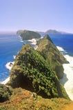 在Anacapa海岛,海峡群岛国家公园,加利福尼亚上的启发点 免版税库存照片