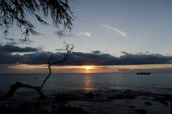 在Anaeho ` omalu海滩的日落 免版税库存图片