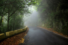 在Anaga山的雾在特内里费岛加那利群岛,西班牙,欧洲 免版税图库摄影