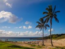 在Anakena的棕榈在复活节岛靠岸在智利 免版税图库摄影