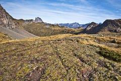 在Anayet高原和峰顶密地Ossau的织地不很细石表面 库存图片