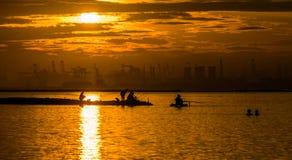在Ancol港口的金黄渔 免版税库存照片