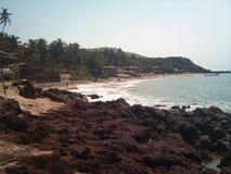 在Anjuna海滩的步行 goa 库存图片