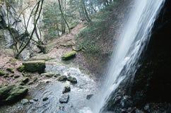 在Annecy湖,开胃菜的瀑布Angon 免版税库存图片