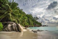 在anse乔其纱, praslin,塞舌尔群岛11的天堂海滩 免版税库存照片