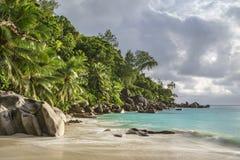 在anse乔其纱, praslin,塞舌尔群岛30的天堂海滩 免版税图库摄影