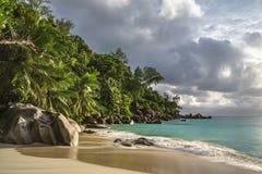 在anse乔其纱, praslin,塞舌尔群岛33的天堂海滩 库存图片