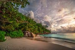在anse乔其纱, praslin,塞舌尔群岛20的天堂海滩 免版税库存图片