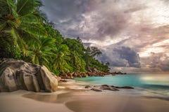 在anse乔其纱, praslin,塞舌尔群岛8的天堂海滩 库存照片