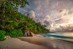 在anse乔其纱, praslin,塞舌尔群岛21的天堂海滩 免版税库存照片
