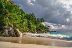 在anse乔其纱, praslin,塞舌尔群岛36的天堂海滩 图库摄影