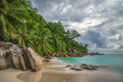 在anse乔其纱, praslin,塞舌尔群岛7的天堂海滩 免版税库存图片