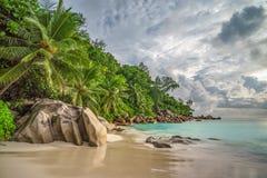在anse乔其纱, praslin,塞舌尔群岛11的天堂海滩 免版税库存图片