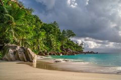 在anse乔其纱, praslin,塞舌尔群岛39的天堂海滩 免版税库存照片