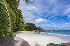 在anse拉齐奥的天堂海滩在塞舌尔群岛54 库存照片